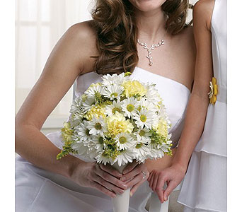 Yellow Wedding 5 in Albuquerque NM, Silver Springs Floral & Gift