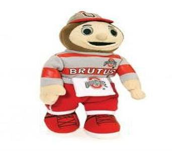 Brutus in Columbus OH, OSUFLOWERS .COM