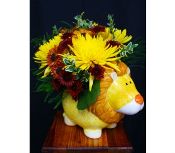 Lion King for Baby Boy in Cocoa FL, A Basket Of Love Florist