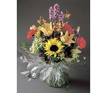 Colorful Stems Collection in Toronto ON, Garrett Florist