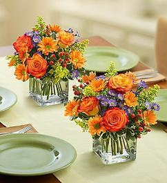 FALL CELEBRATION BOUQUET in Vienna VA, Vienna Florist & Gifts