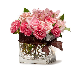 Blushing Pink in Louisville KY, Country Squire Florist, Inc.
