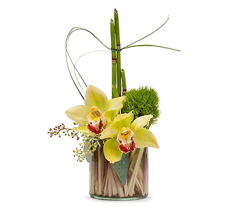 Simplicity in Crystal River FL, Waverley Florist