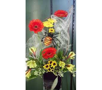 Not So Spooky Spider in McKees Rocks PA, Muzik's Floral & Gifts