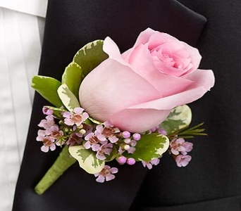 Pink Rose Boutonniere in Medfield MA, Lovell's Flowers, Greenhouse & Nursery