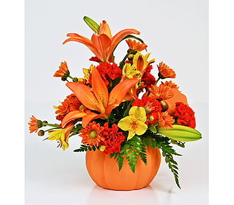 November Pumpkin in Indianapolis IN, Gillespie Florists