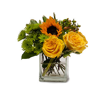 Sunny Limeade in Huntington IN, Town & Country Flowers & Gifts