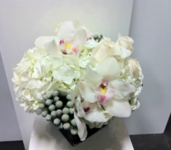 All in White in Thornhill ON, Orchid Florist