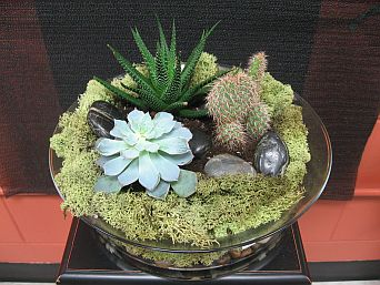 Terrarium Garden 3 in Guelph ON, Patti's Flower Boutique
