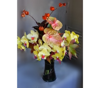 Long Lasting Beauty in Orinda CA, Misaghi Design Orinda Florist