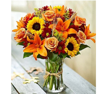 Fields of Europe� for Fall in Watertown CT, Agnew Florist
