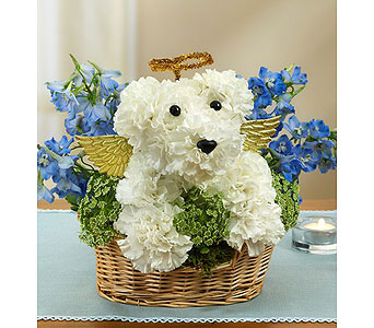 All Dogs go to Heaven in Mission Viejo CA, Conroy's Flowers
