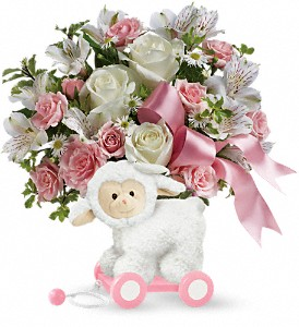 Teleflora's Sweet Little Lamb - Baby Pink in Corona CA, Corona Rose Flowers & Gifts