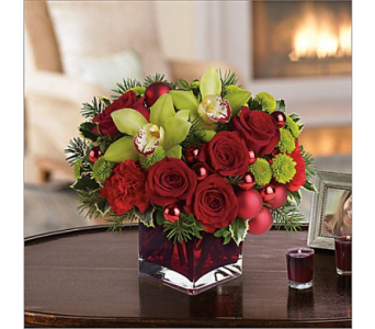 Modern and Compact - Merry and Bright in Bradenton FL, Ms. Scarlett's Flowers & Gifts