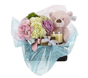 Baby Girl Arrival Vase and Gift Basket in Oklahoma City OK, Trochta's