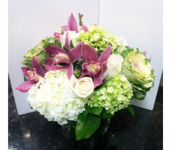 Fresh & Elegant in Thornhill ON, Orchid Florist