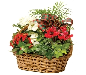 Holiday European Basket in Little Rock AR, Tipton & Hurst, Inc.
