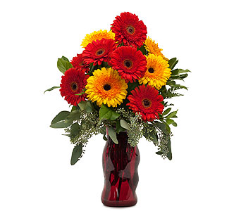 Mighty Gerberas in Holladay UT, Brown Floral