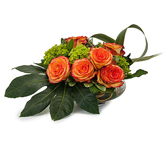 On Fire in Mount Morris MI, June's Floral Company & Fruit Bouquets