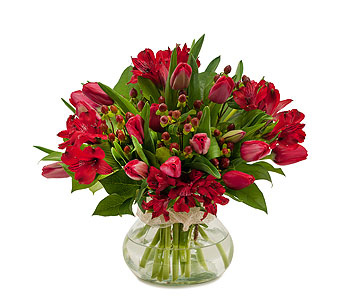 Tulip Supreme in Muscle Shoals AL, Kaleidoscope Florist & Gifts