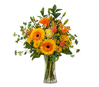Citrus Spray in Spartanburg SC, A-Arrangement Florist