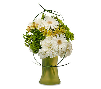Double Knot in Sault Ste Marie MI, CO-ED Flowers & Gifts Inc.