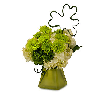 Shamroo in Sault Ste Marie MI, CO-ED Flowers & Gifts Inc.