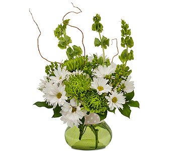 Dots and Daisies in Mount Morris MI, June's Floral Company & Fruit Bouquets