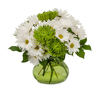 Top of the Morning in Sault Ste Marie MI, CO-ED Flowers & Gifts Inc.
