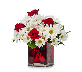 Affection in Brockton MA, Holmes-McDuffy Florists, Inc 508-586-2000