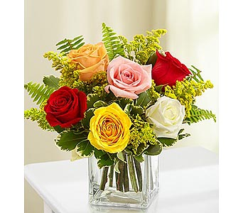 6 Assorted Roses in Cube in Palm Desert CA, Milan's Flowers & Gifts
