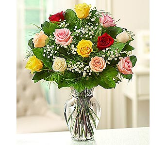 12 Premium Long Stem  Roses - Assorted in Palm Desert CA, Milan's Flowers & Gifts