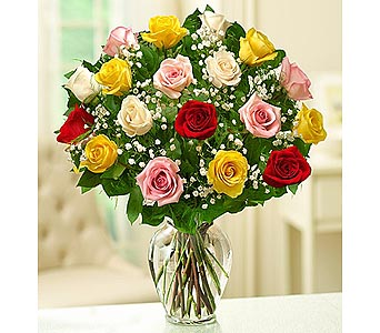 24 Premium Long Stem  Roses - Assorted in Palm Desert CA, Milan's Flowers & Gifts