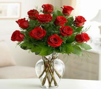 One Dozen Red Roses in Perrysburg & Toledo OH  OH, Ken's Flower Shops