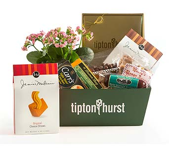 Gourmet Specialty Basket With Plant in Little Rock AR, Tipton & Hurst, Inc.