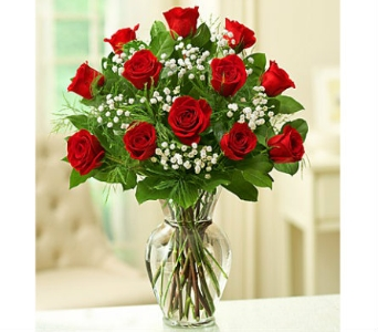 Rose Elegance Premium Long Stem Red Roses in Watertown CT, Agnew Florist