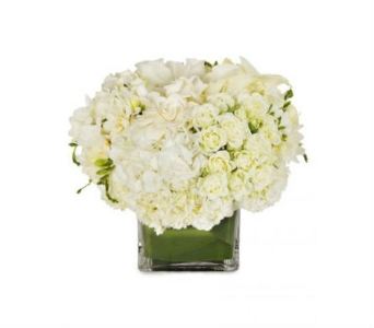 Elegant White Cube in Wellington FL, Wellington Florist