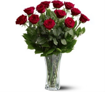 A Dozen Red Roses in Rochester MN, Sargents Floral & Gift