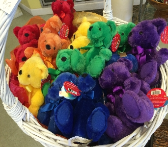 Plush Rainbow Bear in Jamesburg NJ, Sweet William & Thyme