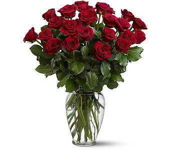 Two Dozen Roses in Hinsdale IL, Hinsdale Flower Shop