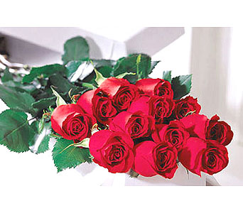 Valentines day flowers delivery sault ste marie on the flower shop one dozen premium red or colored boxed roses in sault ste marie on the flower m4hsunfo