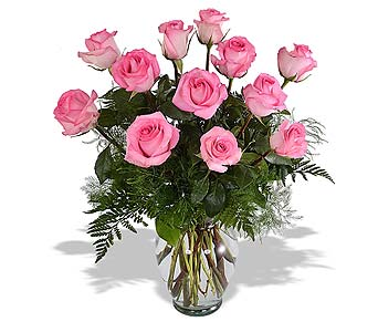Pink Roses in St. Louis MO, Walter Knoll Florist