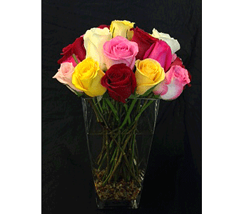 Rainbow Roses with River Rock in Dallas TX, Z's Florist
