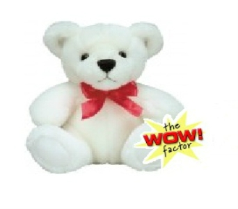 Free Wow Factor Bear in Columbus OH, OSUFLOWERS .COM