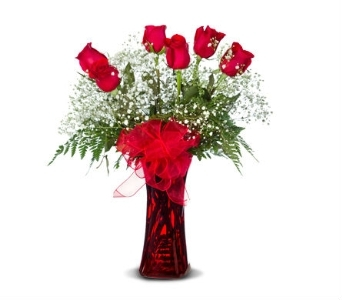 1/2 DOZEN RED ARRANGED in Gainesville FL, Floral Expressions Florist