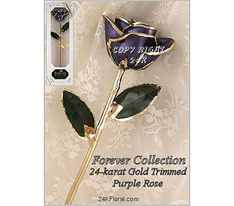 Purple Rose in Aston PA, Blair's Florist