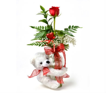 Bear Hug Budvase in East Syracuse NY, Whistlestop Florist Inc