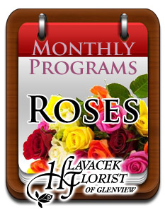 Monthly Program - ROSES in Glenview IL, Hlavacek Florist of Glenview