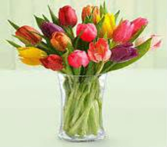 mixed tulips in Bismarck ND, Dutch Mill Florist, Inc.
