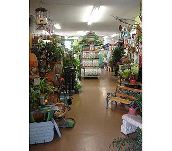 Inside Our Shop in Decorah IA, Decorah Floral